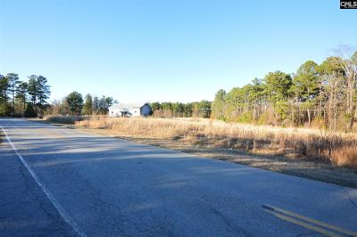 Commercial For Sale: 1552 Wateree Dam