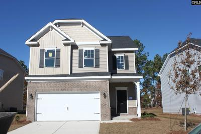 Lexington County, Richland County Single Family Home For Sale: 185 Ashewicke #71
