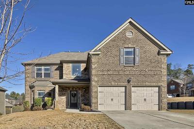 Lexington Single Family Home For Sale: 109 Park Place