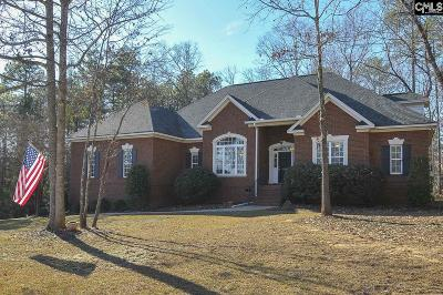 Chapin Single Family Home For Sale: 311 Lookout Hill