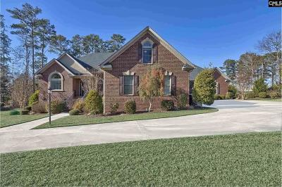 Lexington County Single Family Home For Sale: 601 E Point