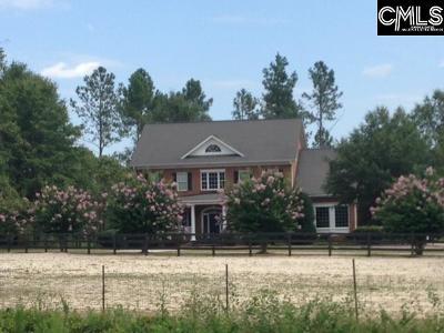 Orangeburg Single Family Home For Sale: 992 Farnum