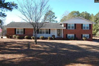 Kershaw County Single Family Home For Sale: 1917 Niagara