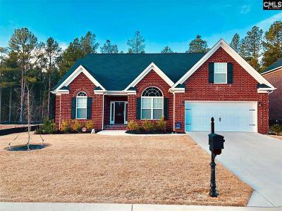 Blythewood Single Family Home For Sale: 820 Near Creek
