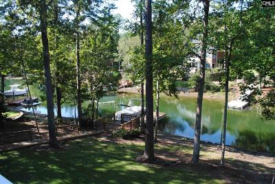 Lexington County, Richland County Single Family Home For Sale: 428 Lookover Pointe Drive