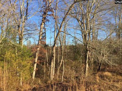 Blythewood, Ridgeway, Winnsboro, Ballentine, Columbia, Eastover, Elgin, Forest Acres, Gadsden, Hopkins Residential Lots & Land For Sale: 425 Langford