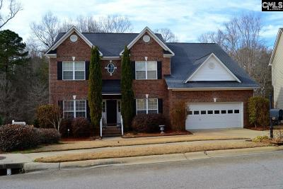 Irmo Single Family Home For Sale: 107 Hollenbeck