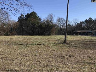 Newberry Residential Lots & Land For Sale: Giff St. And Upper Lane