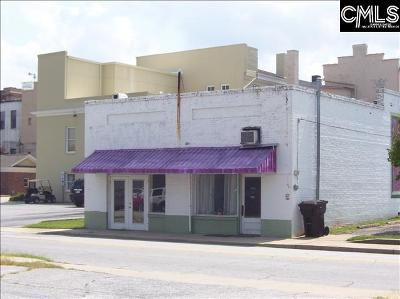 Monetta, Ridge Spring, Wagener, Johnston, Pelion, Newberry, Ward Commercial For Sale: 1108/1110 Harrington