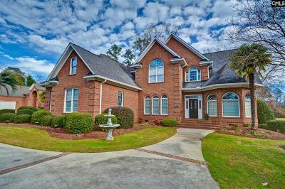 Lexington County Single Family Home For Sale: 247 Palmer