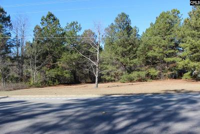 Lexington County, Richland County Residential Lots & Land For Sale: 4110 Fish Hatchery