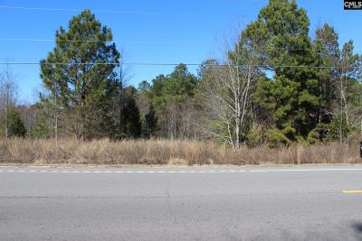 Lexington County, Richland County Residential Lots & Land For Sale: 4116 Fish Hatchery