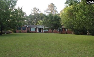 Irmo Single Family Home For Sale: 140 Lum