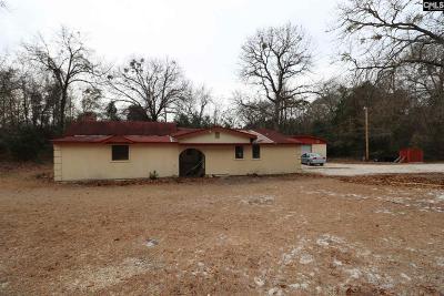 Lexington Single Family Home For Sale: 1027 Daralynn