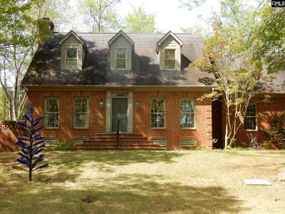 Chapin Single Family Home For Sale: 1104 Silver Point