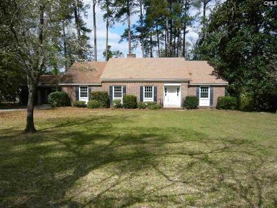 Orangeburg Single Family Home For Sale: 465 Pike