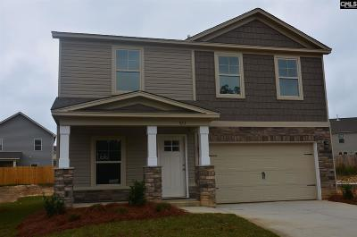Park West Single Family Home For Sale: 523 Connecticut #163