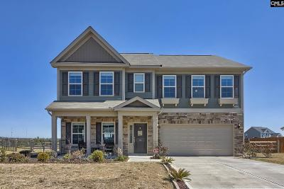 Lexington County Single Family Home For Sale: 151 Tannery