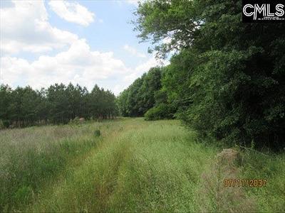 Blythewood, Ridgeway, Winnsboro, Ballentine, Columbia, Eastover, Elgin, Forest Acres, Gadsden, Hopkins Residential Lots & Land For Sale: Kelly Mill
