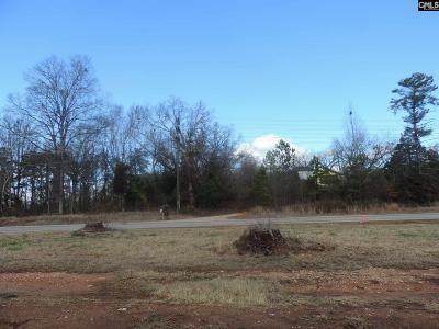 Irmo, Ballentine Residential Lots & Land For Sale: 10600 Broad River