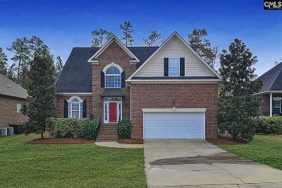 Chapin Single Family Home For Sale: 22 Hilton Glen