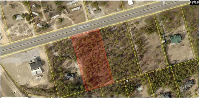 Lexington County Residential Lots & Land For Sale: 5025 Platt Springs