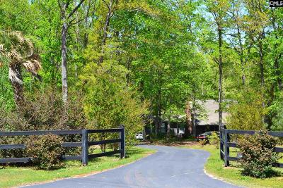 Chapin Single Family Home For Sale: 164 Back Acres