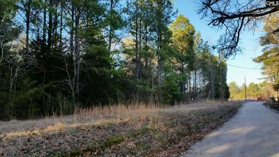 Lexington County Residential Lots & Land For Sale: Chapin