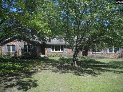 Lexington County Single Family Home For Sale: 407 Lyndhurst Road
