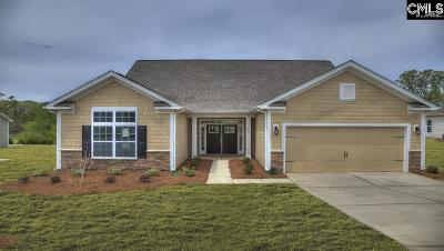 Blythewood Single Family Home For Sale: 617 Dew Pond #95