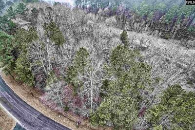 Newberry Residential Lots & Land For Sale: 335 Lakeview