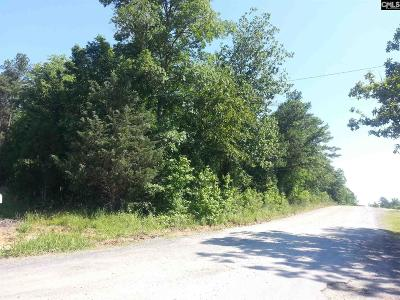 Irmo Residential Lots & Land For Sale: 341 Western
