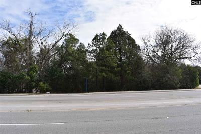 Cayce, S. Congaree, Springdale, West Columbia Residential Lots & Land For Sale: 1713 Platt Springs