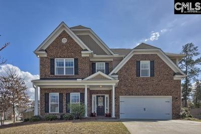 Irmo Single Family Home For Sale: 313 Nichols Branch