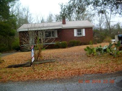 Newberry Single Family Home For Sale: 359 Wise Road