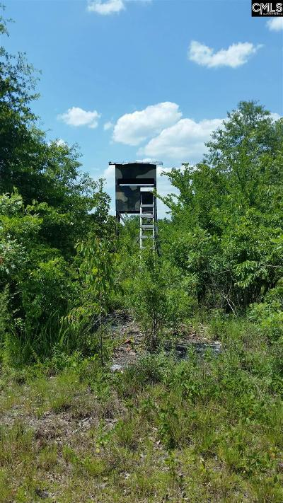 Kershaw County Residential Lots & Land For Sale: 3473 West