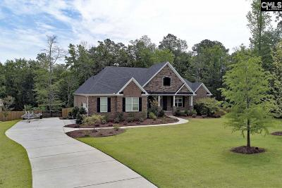Chapin SC Single Family Home For Sale: $637,500