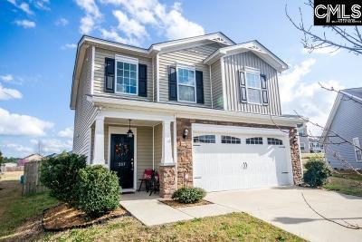 Single Family Home For Sale: 207 Cuyahago