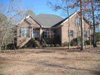 Chapin SC Single Family Home For Sale: $369,000