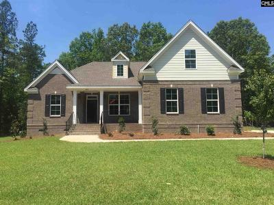 Lexington County Single Family Home For Sale: 220 Hilton View