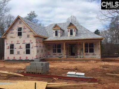 Chapin Single Family Home For Sale: 234 Hilton View