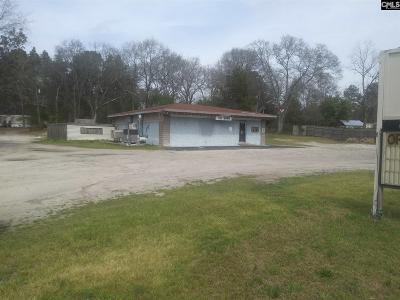 Lexington Commercial For Sale: 1918 Old Barnwell Rd