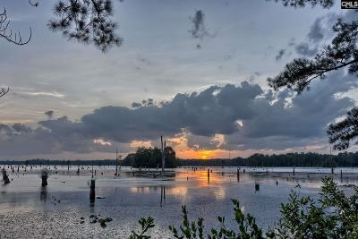 Kershaw County Residential Lots & Land For Sale: 802 E Hermitage Pond