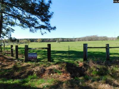 Batesburg SC Residential Lots & Land For Sale: $198,750