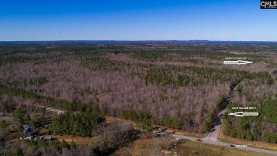 Batesburg, Leesville Residential Lots & Land For Sale: Hwy 378