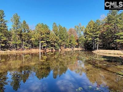 Blythewood, Ridgeway, Winnsboro, Ballentine, Columbia, Eastover, Elgin, Forest Acres, Gadsden, Hopkins Residential Lots & Land For Sale: Loner