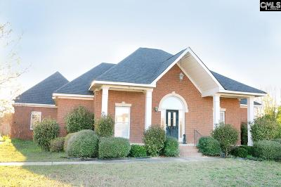 Gilbert Single Family Home For Sale: 119 Oneal Shealy