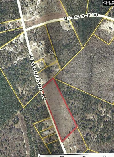 Monetta, Ridge Spring, Wagener, Johnston, Pelion, Newberry, Ward Residential Lots & Land For Sale: Wagontong