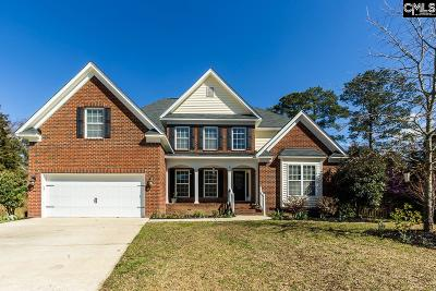 Irmo Single Family Home For Sale: 213 S Nichols Creek