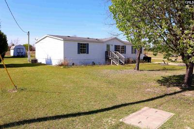 Single Family Home For Sale: 209 Peeler